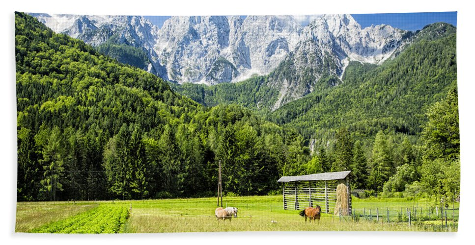 Slovenia Hand Towel featuring the photograph Julian Alps Farm by Timothy Hacker