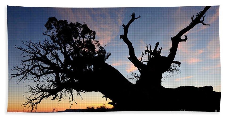 Nature Bath Sheet featuring the photograph Juniper Tree, Canyonlands National Park by John Shaw