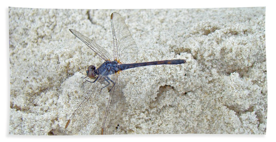 Dragonfly Bath Sheet featuring the photograph Just Another Day At The Beach by Mother Nature