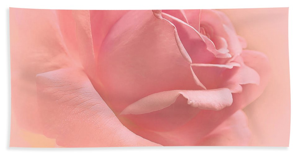 Rose Hand Towel featuring the photograph Blush Pink Rose Flower by Jennie Marie Schell