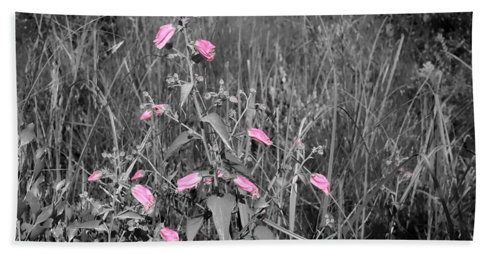 Wildflowers Bath Sheet featuring the photograph Just Pink by Debra Forand