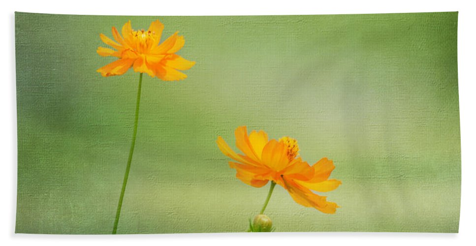 Flower Hand Towel featuring the photograph Just Two by Kim Hojnacki