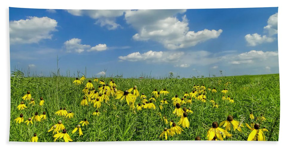 Kansas Hand Towel featuring the photograph Kansas Prairie by Alan Hutchins