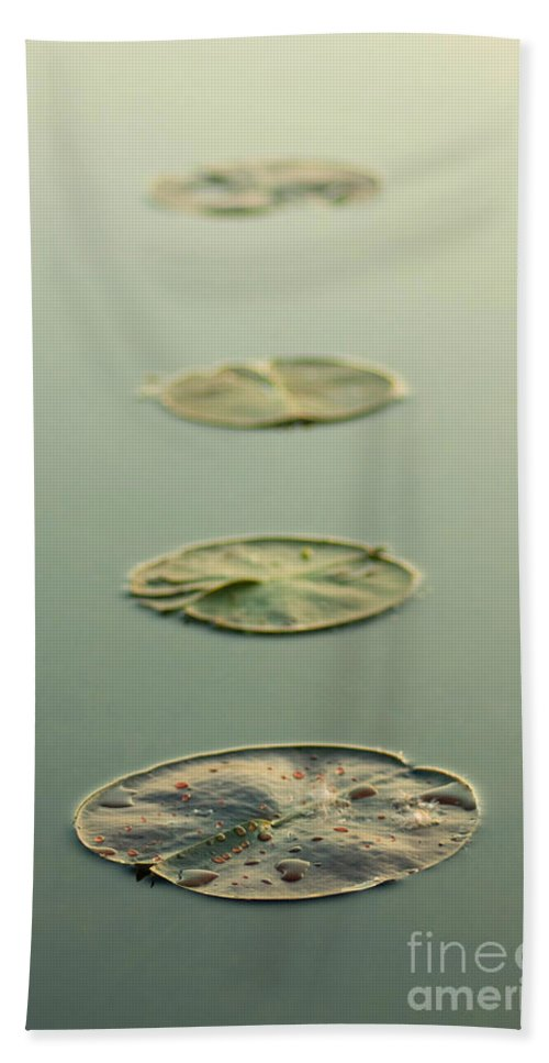 Nature Hand Towel featuring the photograph Keep Calm by Bethany Helzer