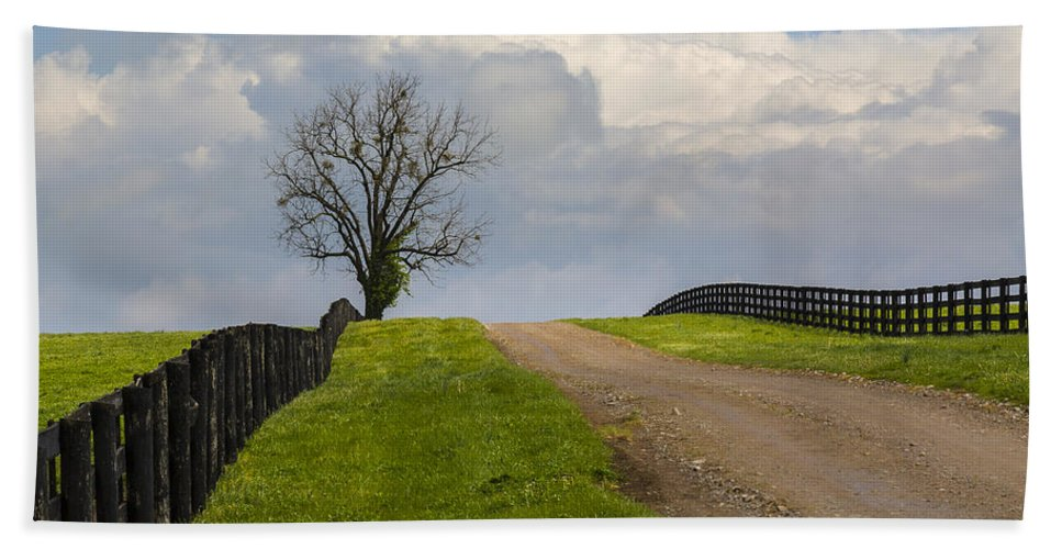 Animal Bath Sheet featuring the photograph Kentucky Horse Farm Road by Jack R Perry