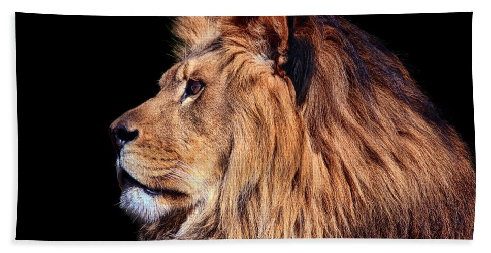 Lion Hand Towel featuring the photograph King Of Beast by Marcia Colelli