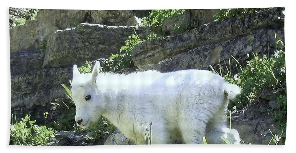 Mountain Goat Photo Bath Sheet featuring the digital art King Of The Mountain by Robert Taylor