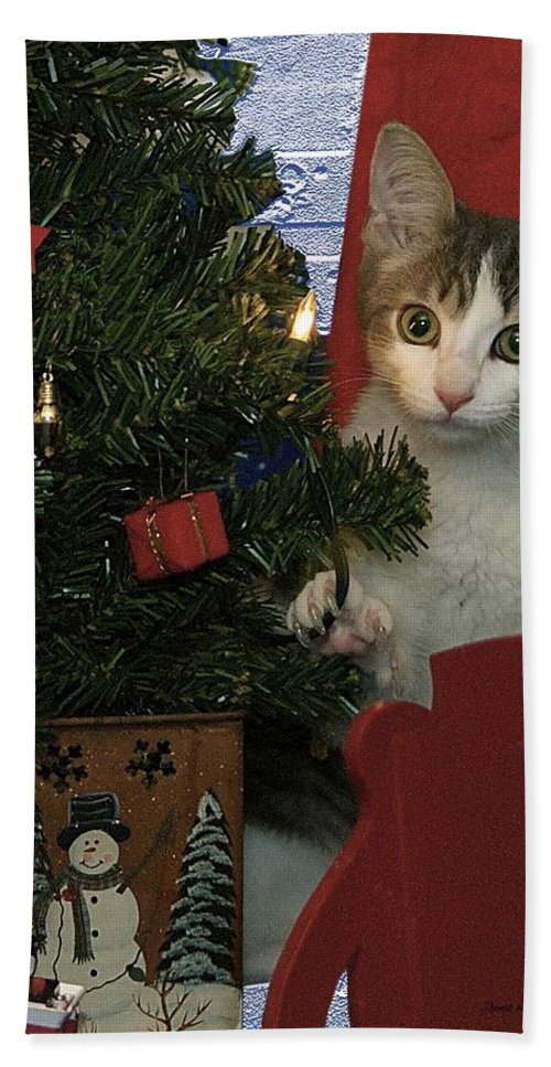 Animals Bath Towel featuring the photograph Kitty Says Happy Holidays by Thomas Woolworth