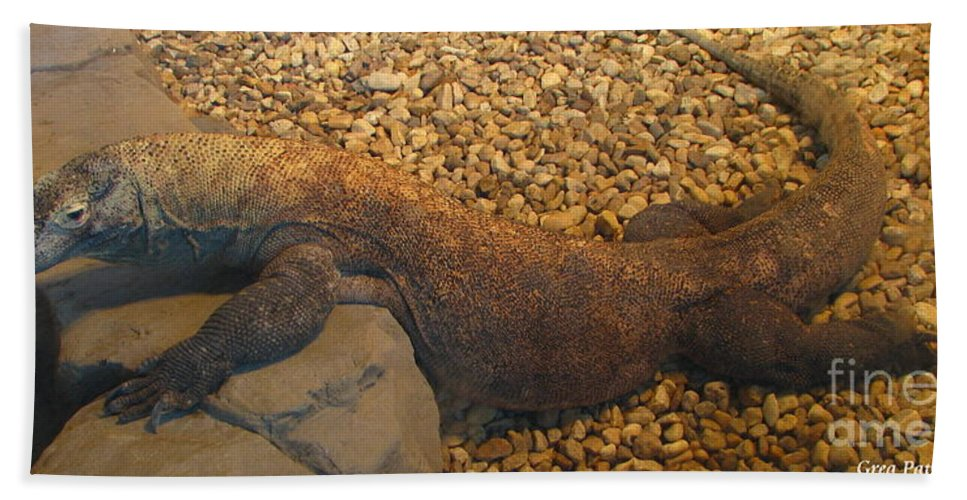 Art For The Wall...patzer Photography Bath Sheet featuring the photograph Komodo by Greg Patzer