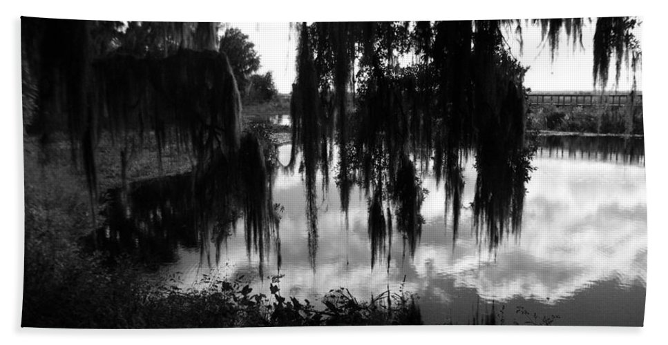 Black And White Hand Towel featuring the photograph La Chua Trail by Corvus Alyse