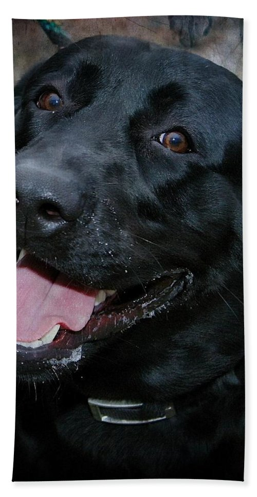 Labrador Bath Sheet featuring the photograph Lab Smile by Joyce Baldassarre