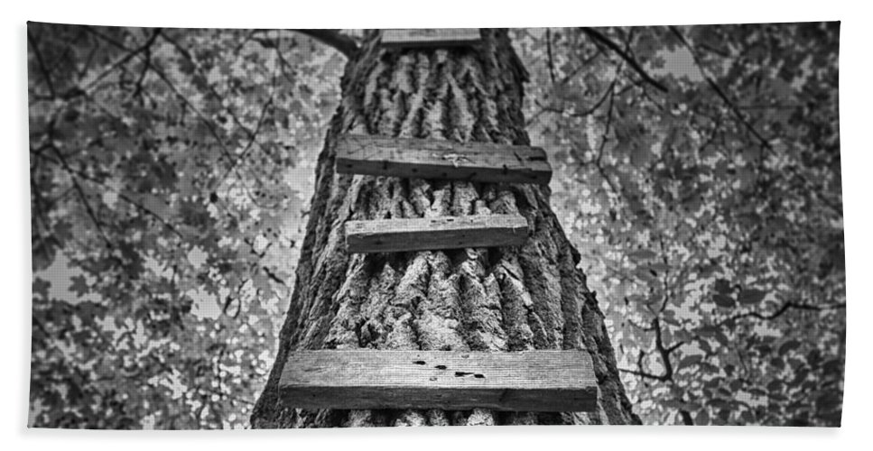 Tree Hand Towel featuring the photograph Ladder To The Treehouse by Scott Norris