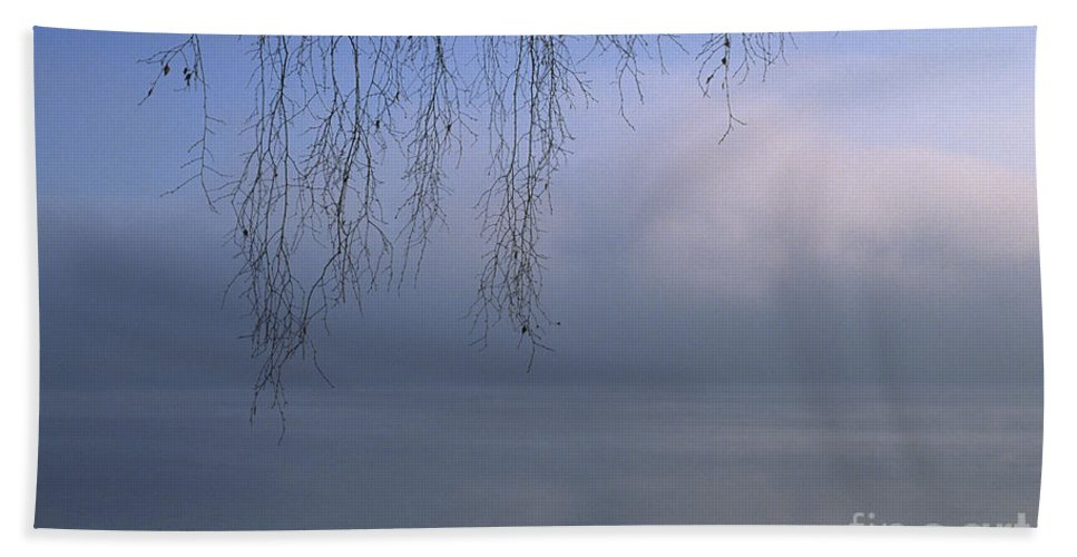 Tree Hand Towel featuring the photograph Lake Stillness by Jim Corwin