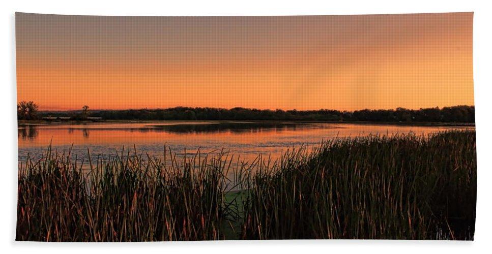 Wausau Bath Sheet featuring the photograph Lake Wausau Marshgrass by Dale Kauzlaric