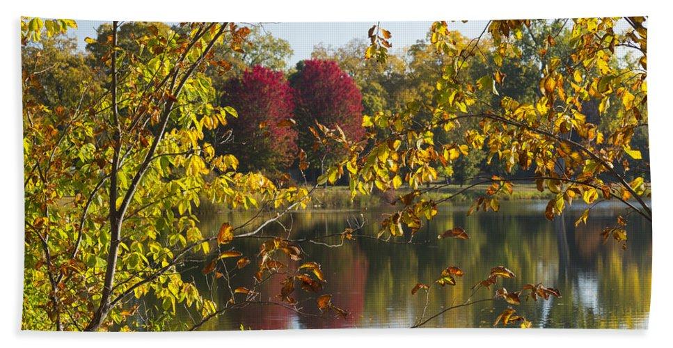 Lake Bath Sheet featuring the photograph Lake Winona Autumn 15 by John Brueske