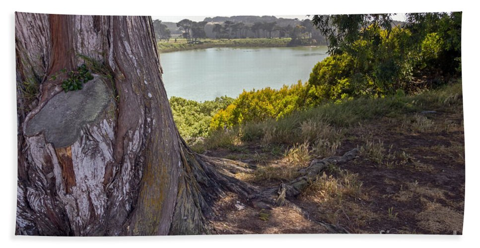 Blue Hand Towel featuring the photograph Lakeside Tree by Kate Brown