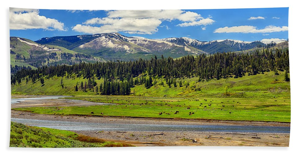 Yellowstone Hand Towel featuring the photograph Lamar Valley by Greg Norrell