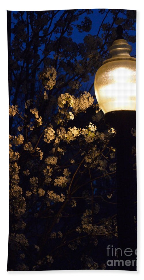 Lamplight Hand Towel featuring the photograph Lamplight 1 by Alys Caviness-Gober