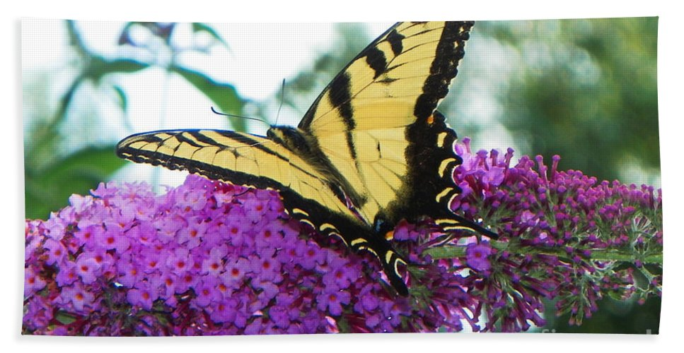 Nature Hand Towel featuring the photograph Landing Zone by Paul Smith