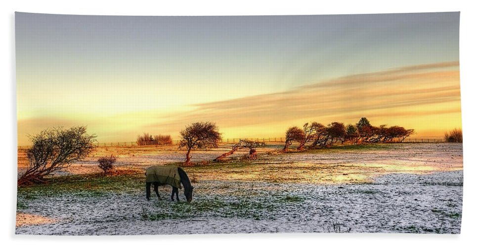Tree Bath Sheet featuring the photograph Landscape And Horse by Svetlana Sewell