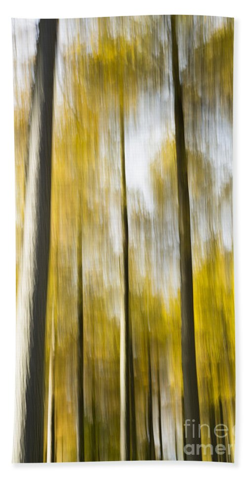 Abstract Hand Towel featuring the photograph Larch In Abstract by Anne Gilbert