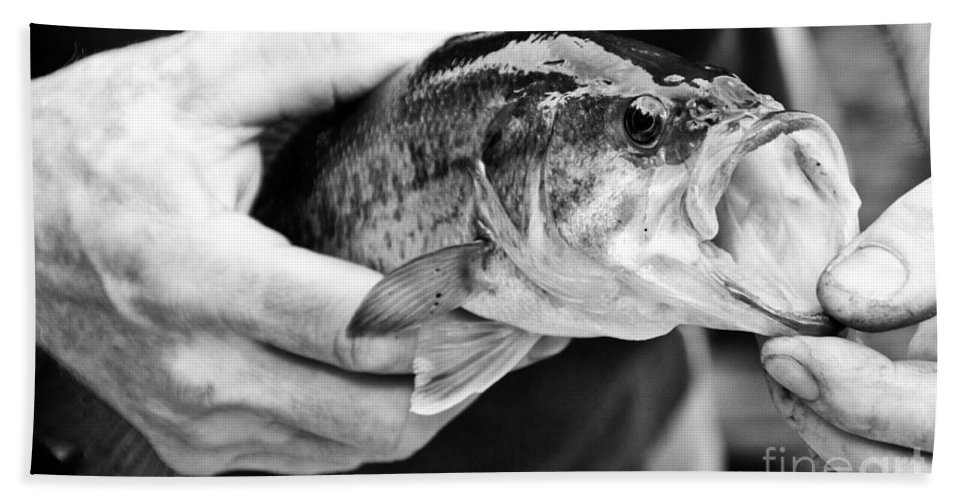 Fish Hand Towel featuring the photograph Large Mouth Bass by Cheryl Baxter