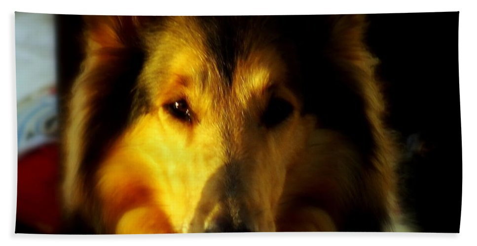 Dogs Bath Sheet featuring the photograph Lassie Come Home by Karen Wiles
