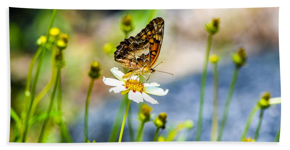 Flowers Hand Towel featuring the photograph Last Bloomin Flower by Mary Hahn Ward