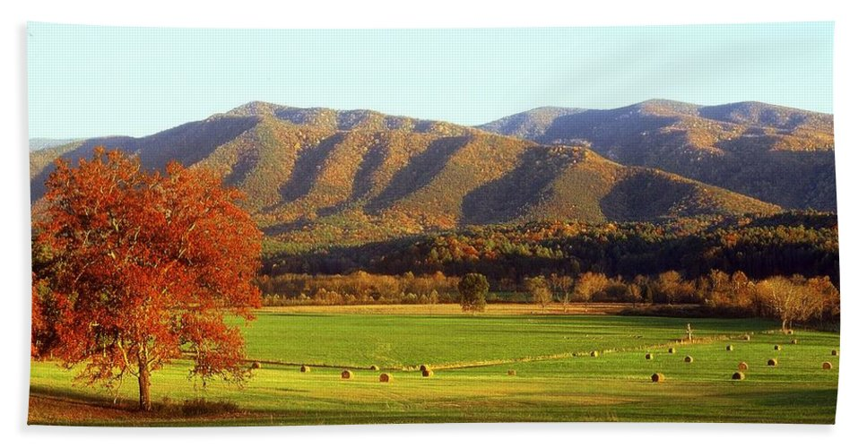 Fine Art Bath Sheet featuring the photograph Late Autumn Afternoon In Cades Cove by Rodney Lee Williams