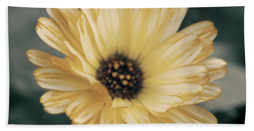 Matt Matekovic Bath Towel featuring the photograph Late Bloomer by Photographic Arts And Design Studio