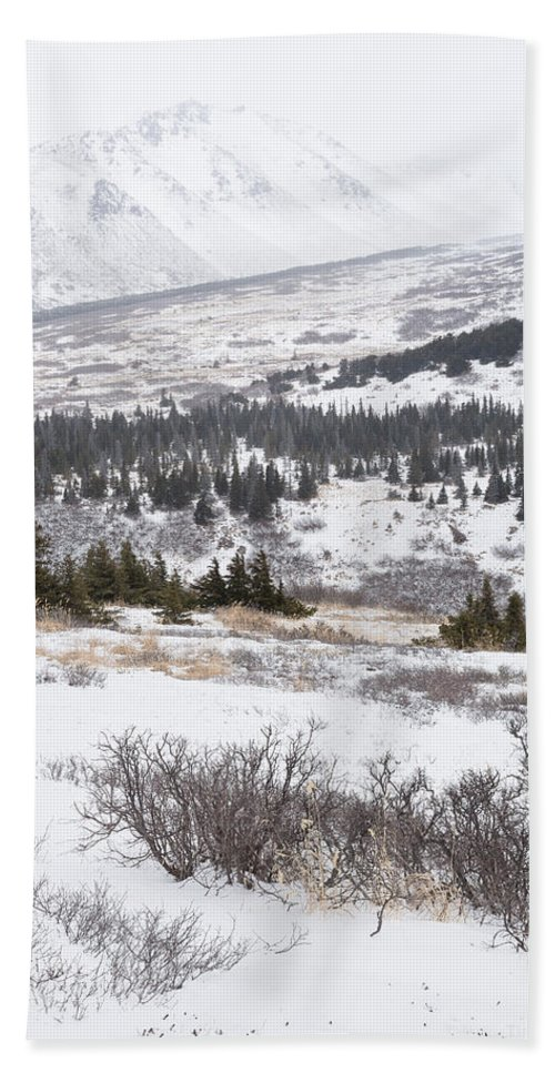 Alaska Hand Towel featuring the photograph Late Winter Storm by Tim Newton