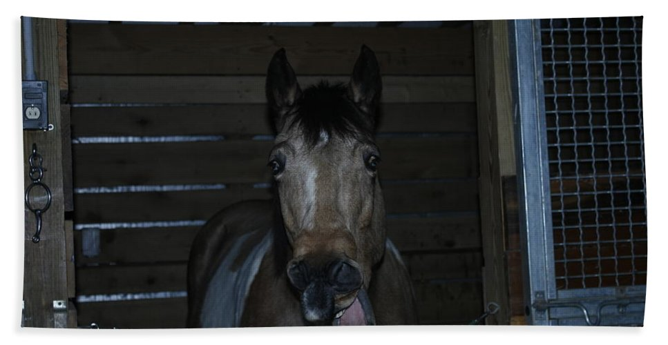 Laughing Horse Bath Sheet featuring the photograph Laughing Horse by David Yocum