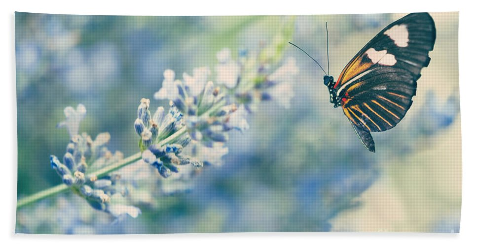 Antennae Hand Towel featuring the photograph Lavender And The Butterfly by Juli Scalzi