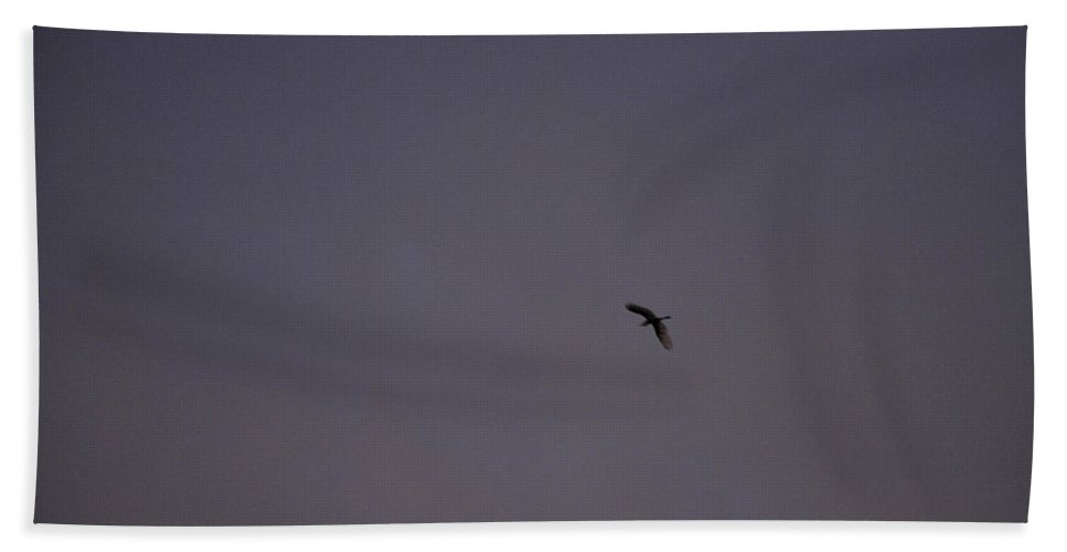 Color Hand Towel featuring the photograph Lavender Sky With Flying Bird by Sally Rockefeller