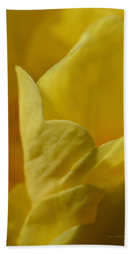 Flower Hand Towel featuring the photograph Layered In Yellow by Donna Blackhall
