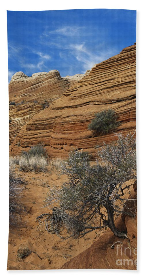 Sandstone Bath Sheet featuring the photograph Layered Sandstone by David Davis