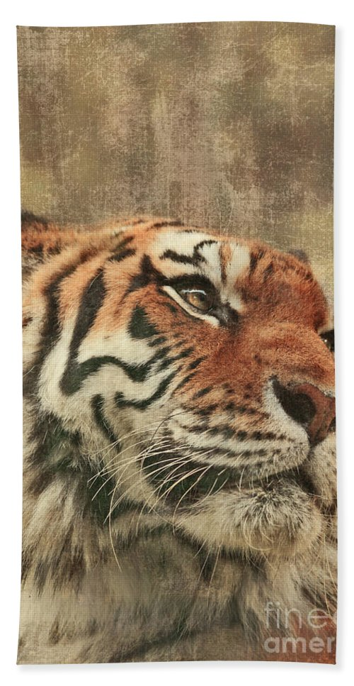 Tiger Hand Towel featuring the photograph Le Reveur by Aimelle