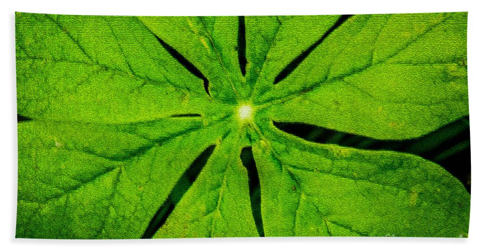 Leaf Hand Towel featuring the photograph Leaf Macro by Grace Grogan