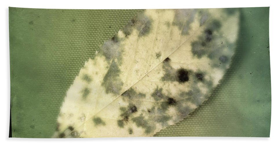 Leaf Bath Sheet featuring the photograph Leaf On Green Fabric by Tim Nyberg