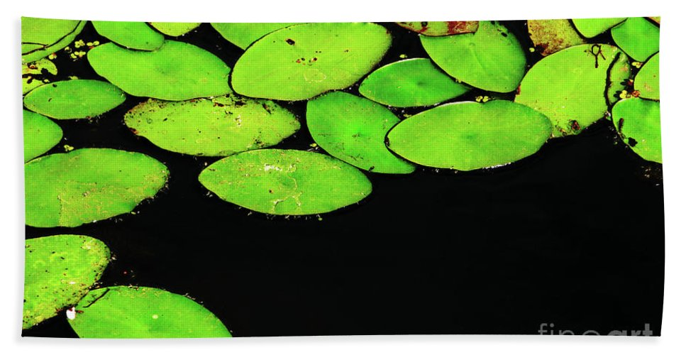 Swamp Hand Towel featuring the photograph Leafy Swamp by Ann Horn