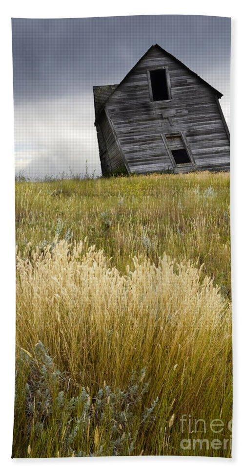 Homestead Hand Towel featuring the photograph Leaning A Little by Bob Christopher