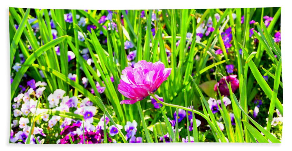 Flower Hand Towel featuring the photograph Leaning Into The Sun by Tina Meador