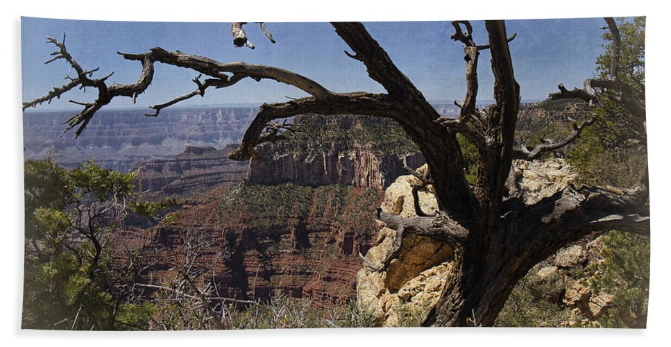Grand Canyon Bath Sheet featuring the photograph Leaning On The Everlasting Arms by Lucinda Walter