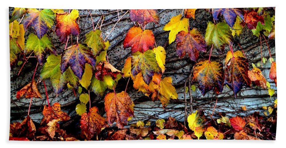 Fall Colors Bath Sheet featuring the photograph Leaves At The Levee by Susie Loechler
