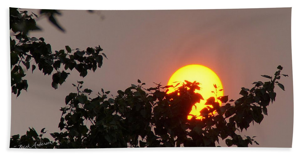 Sun Hand Towel featuring the photograph Leaves Cradling Setting Sun by Mick Anderson
