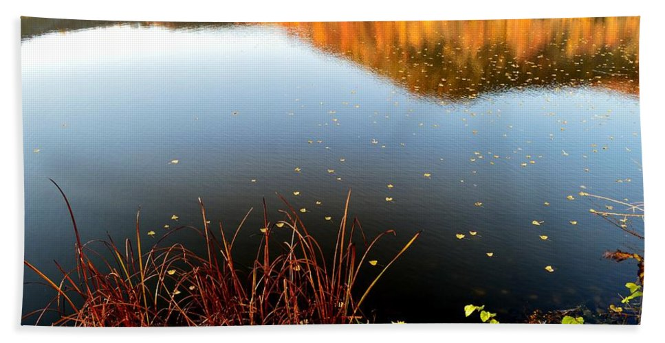 Fall Colors Bath Sheet featuring the photograph Leaves On The Lake by Susie Loechler