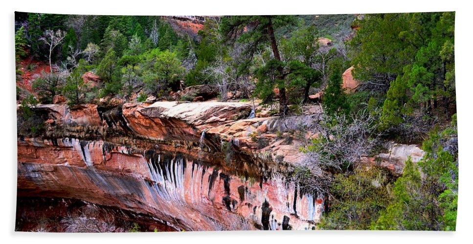 Waterfall Bath Sheet featuring the photograph Ledge At Emerald Pools In Zion National Park by Rincon Road Photography By Ben Petersen