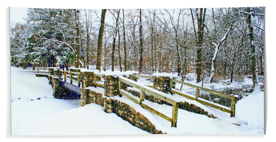 Nature Bath Sheet featuring the photograph Let It Snow Let It Snow by Kay Novy
