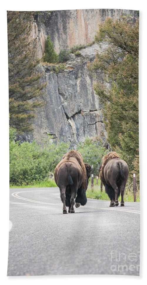 Yellowstone Hand Towel featuring the photograph Let's Start This Day... by Olivier Steiner