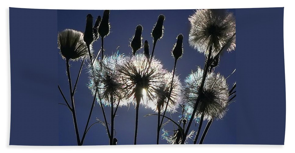 Dandelion Bath Sheet featuring the photograph Letting Go by Charlotte Schafer